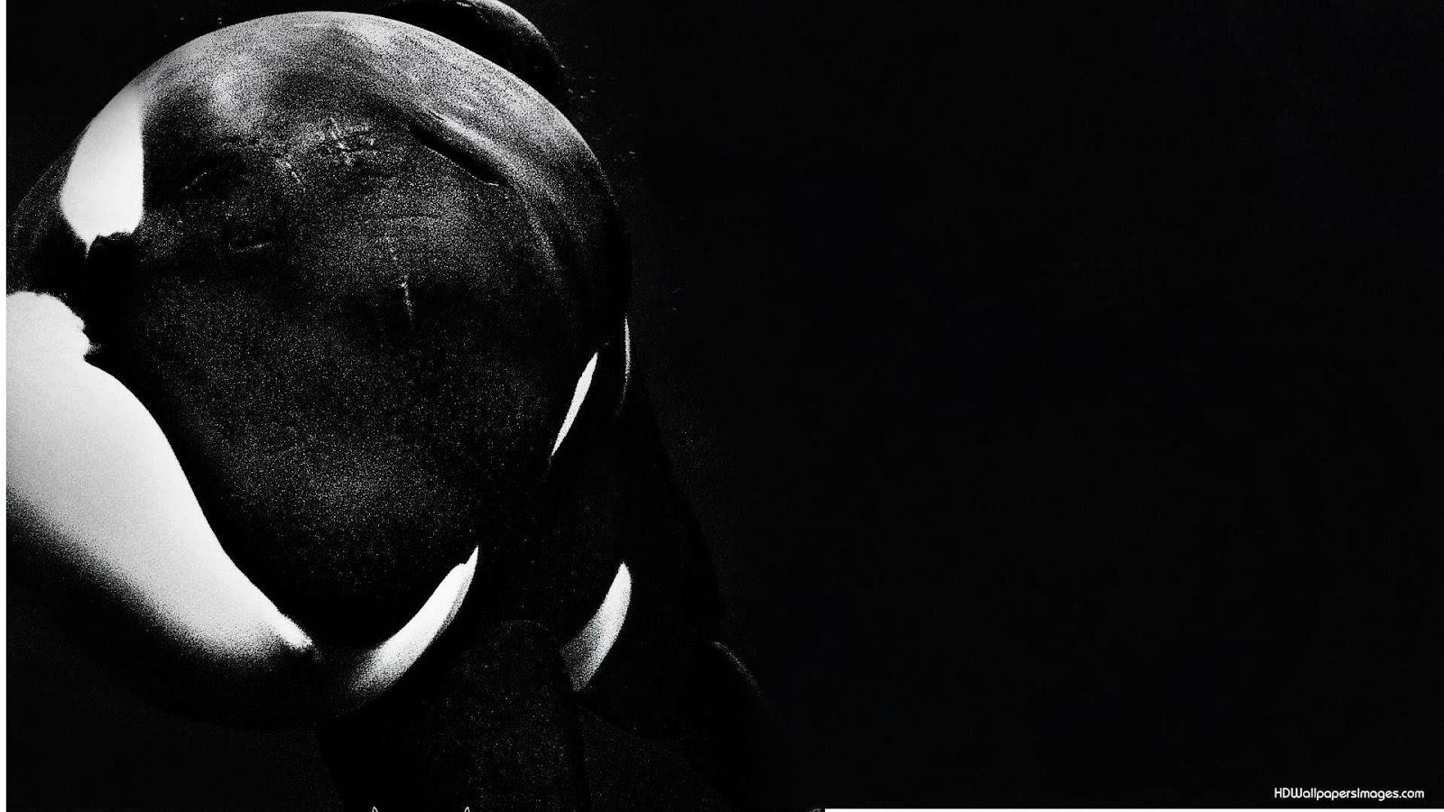 Burpelson Airforce Base Blackfish 1600x900