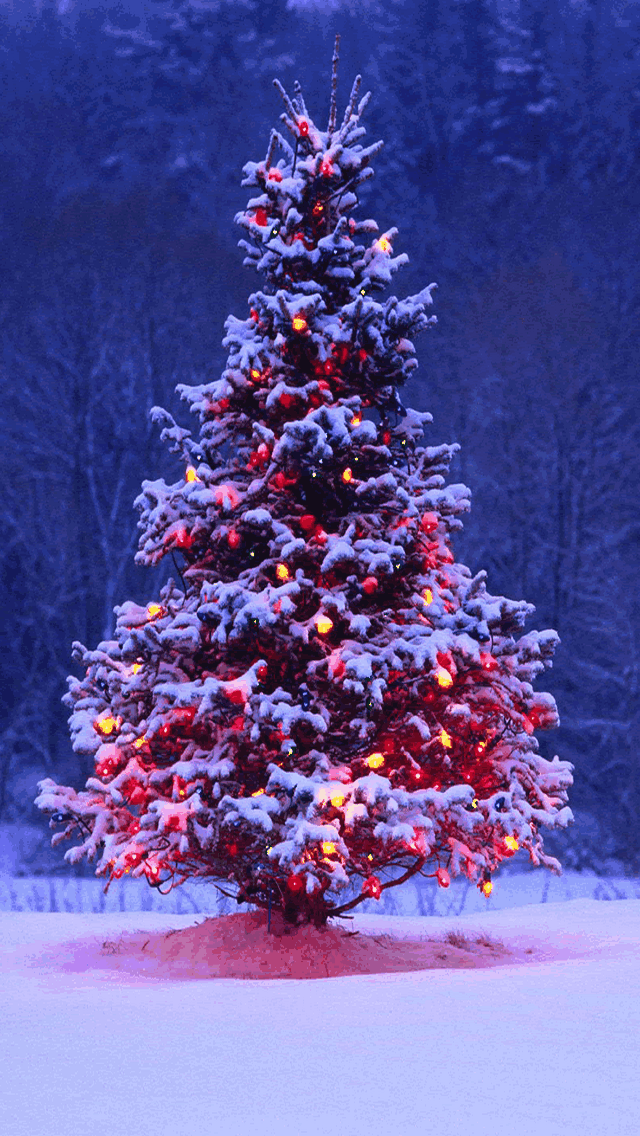 Christmas Wallpaper For Iphone Wallpapers9 640x1136