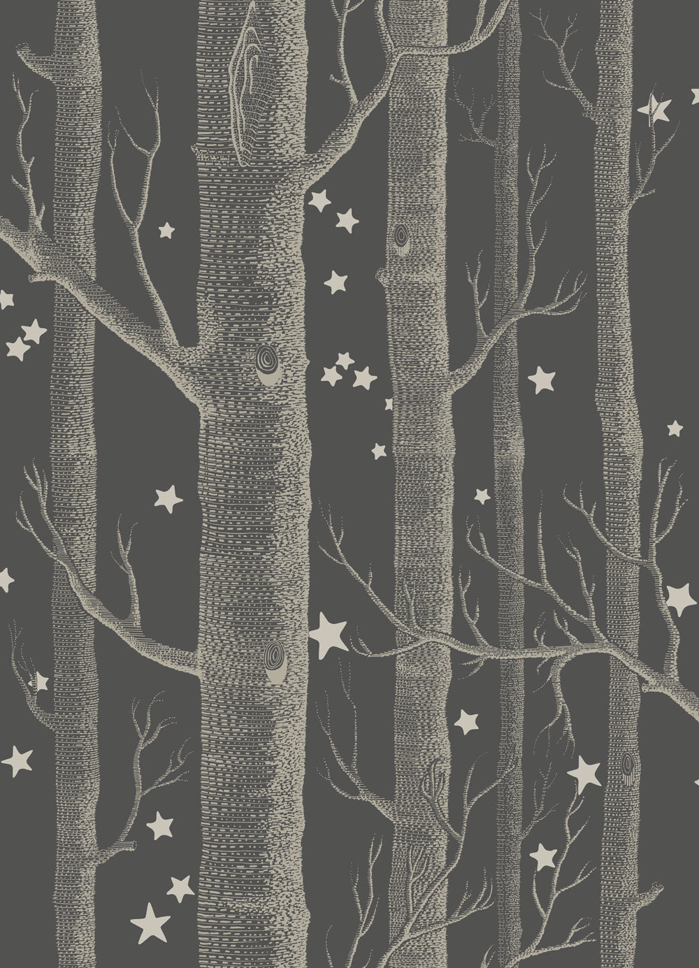 Woods and Stars by Cole Son   Black and White   Wallpaper 1000x1385