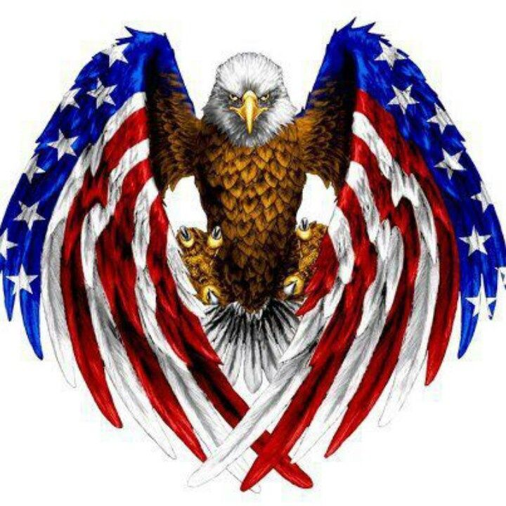 American flag eagle BALD EAGLES Pinterest 720x720
