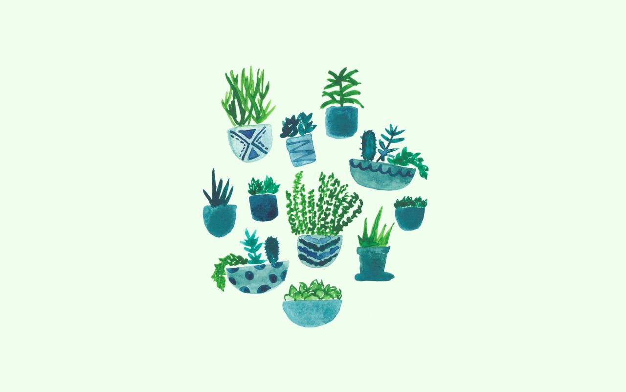 Plant Aesthetic Laptop Wallpapers   Top Plant Aesthetic 1280x801