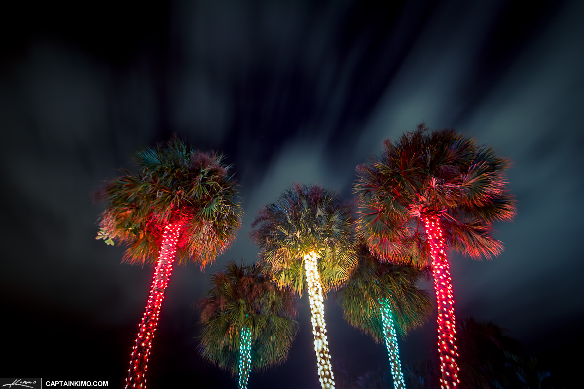 Christmas Tree Lights South Florida Style at Snug Harbor Drive 1200x800