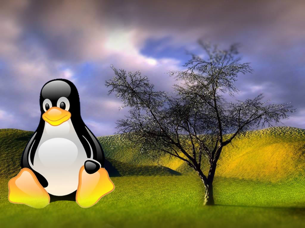 Linux Desktop Wallpaper   Desktop Backgrounds 1024x768