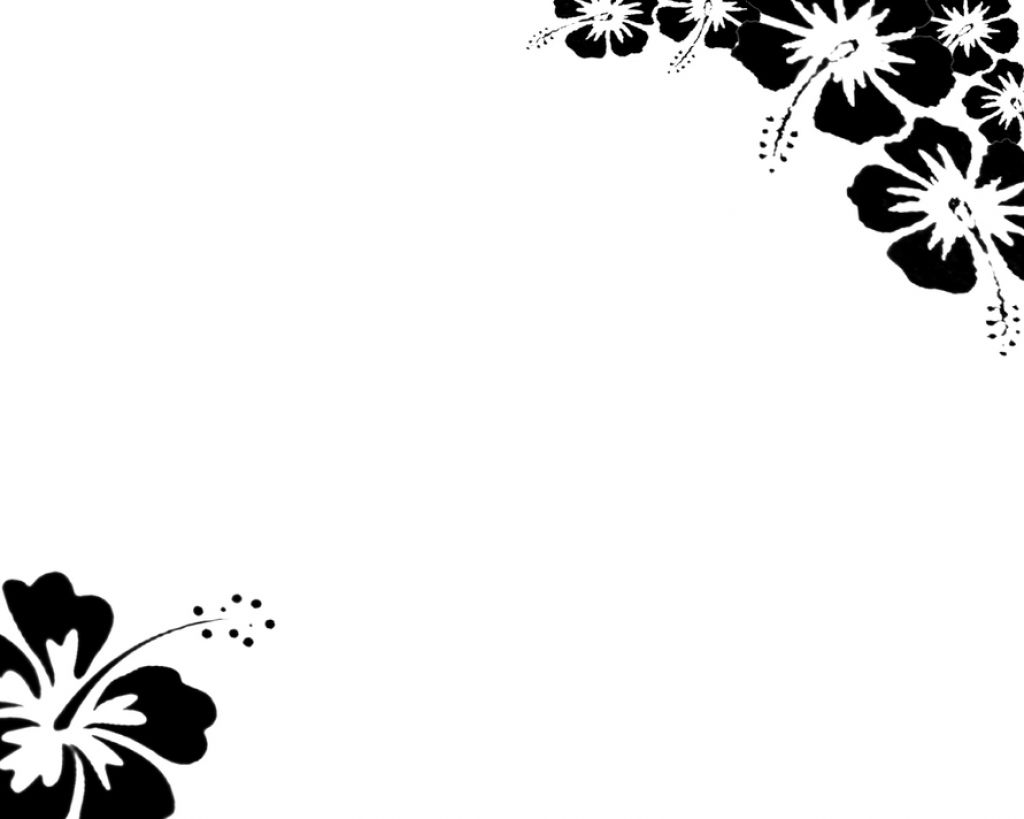 and white flowers wallpaper 4 borders wallpaper Black and white 1024x819