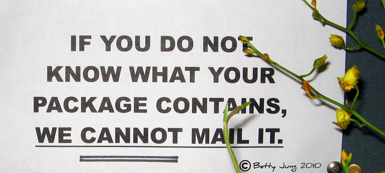 Post Office Humor wallpaper   ForWallpapercom 1597x719