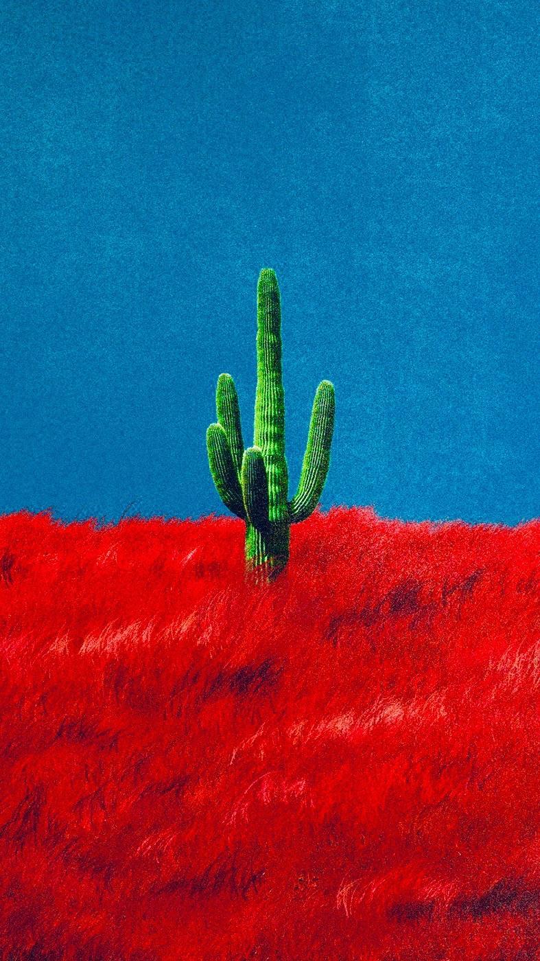Heres a 916 Cactus Wallpaper travisscott 787x1400