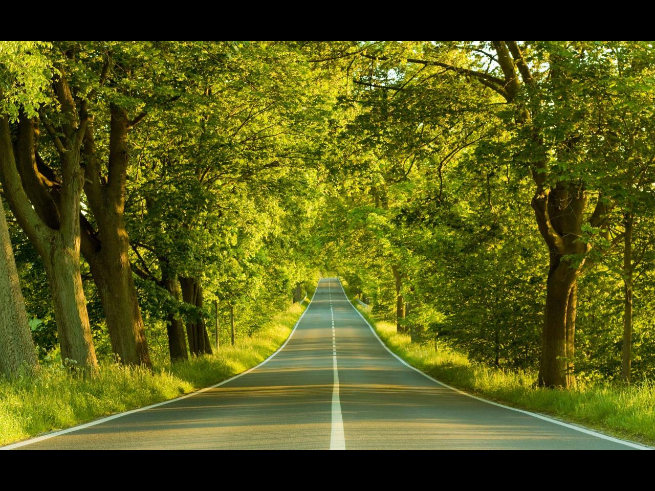 open road in spring Wallpaper Background 30463 1280x960