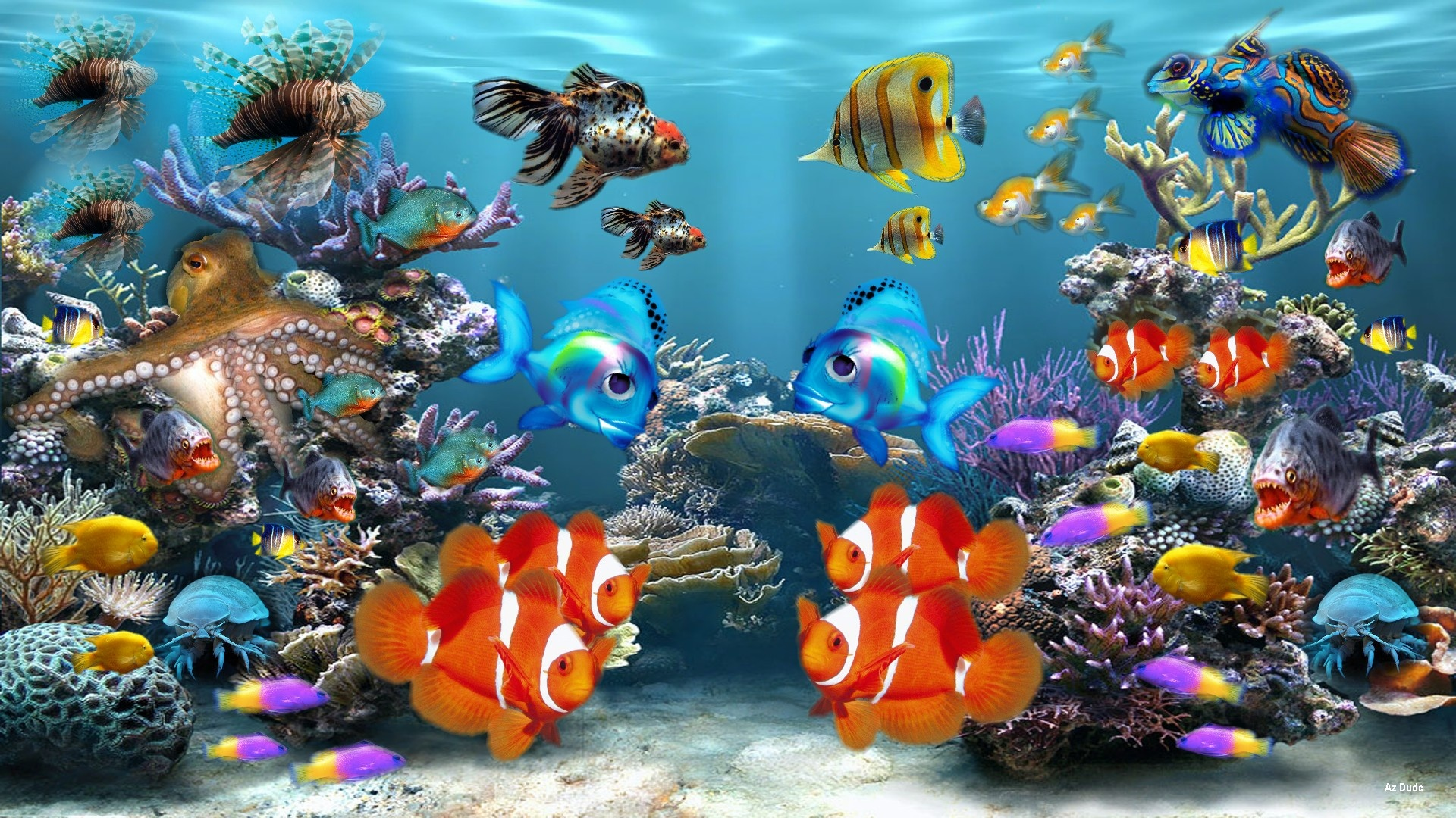 et Tablettes iPad etc   Fish tank 3d live wallpaper download 1920x1080
