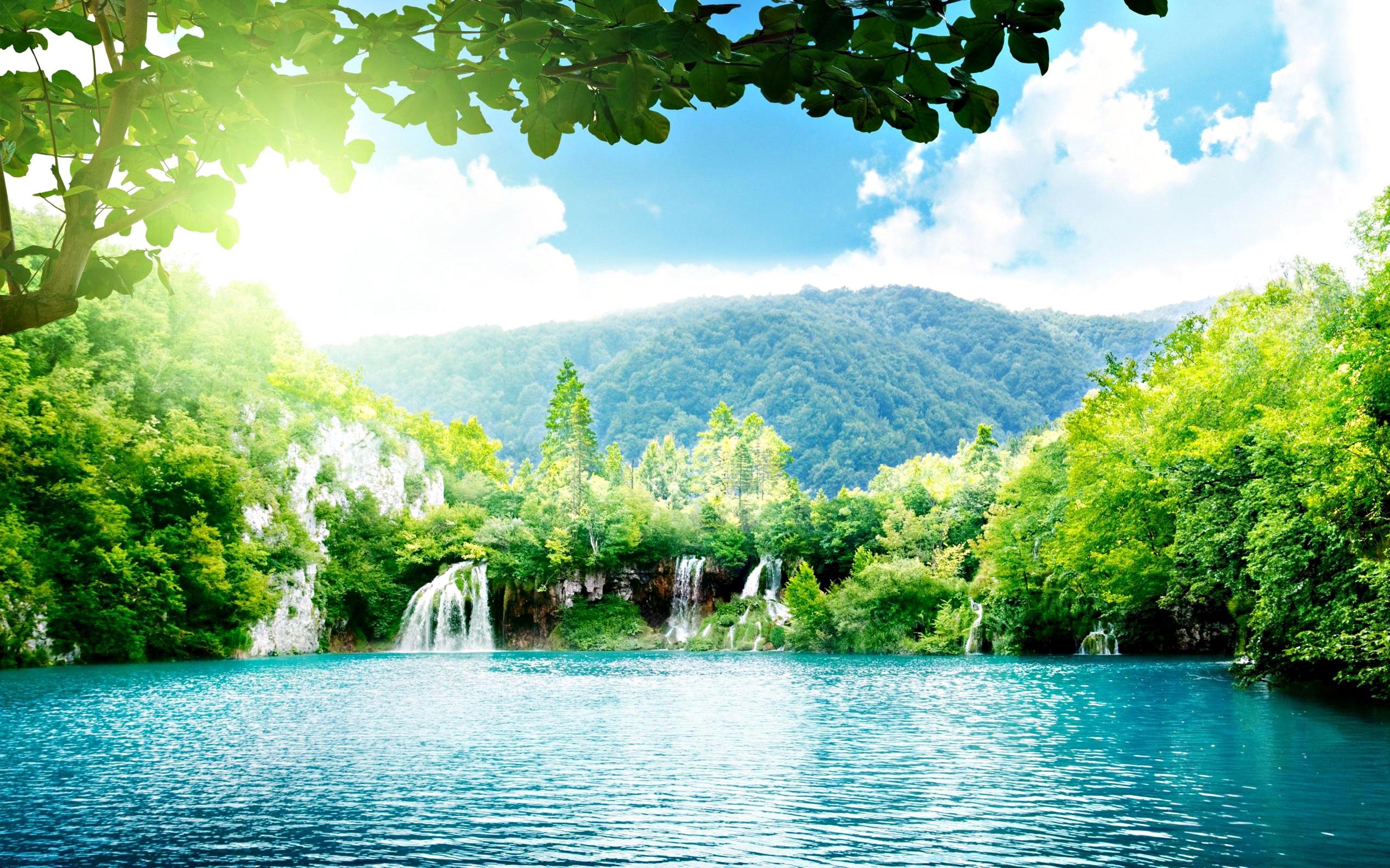 most beautiful landscape of the wood HD Desktop Wallpaper HD Desktop 2560x1600