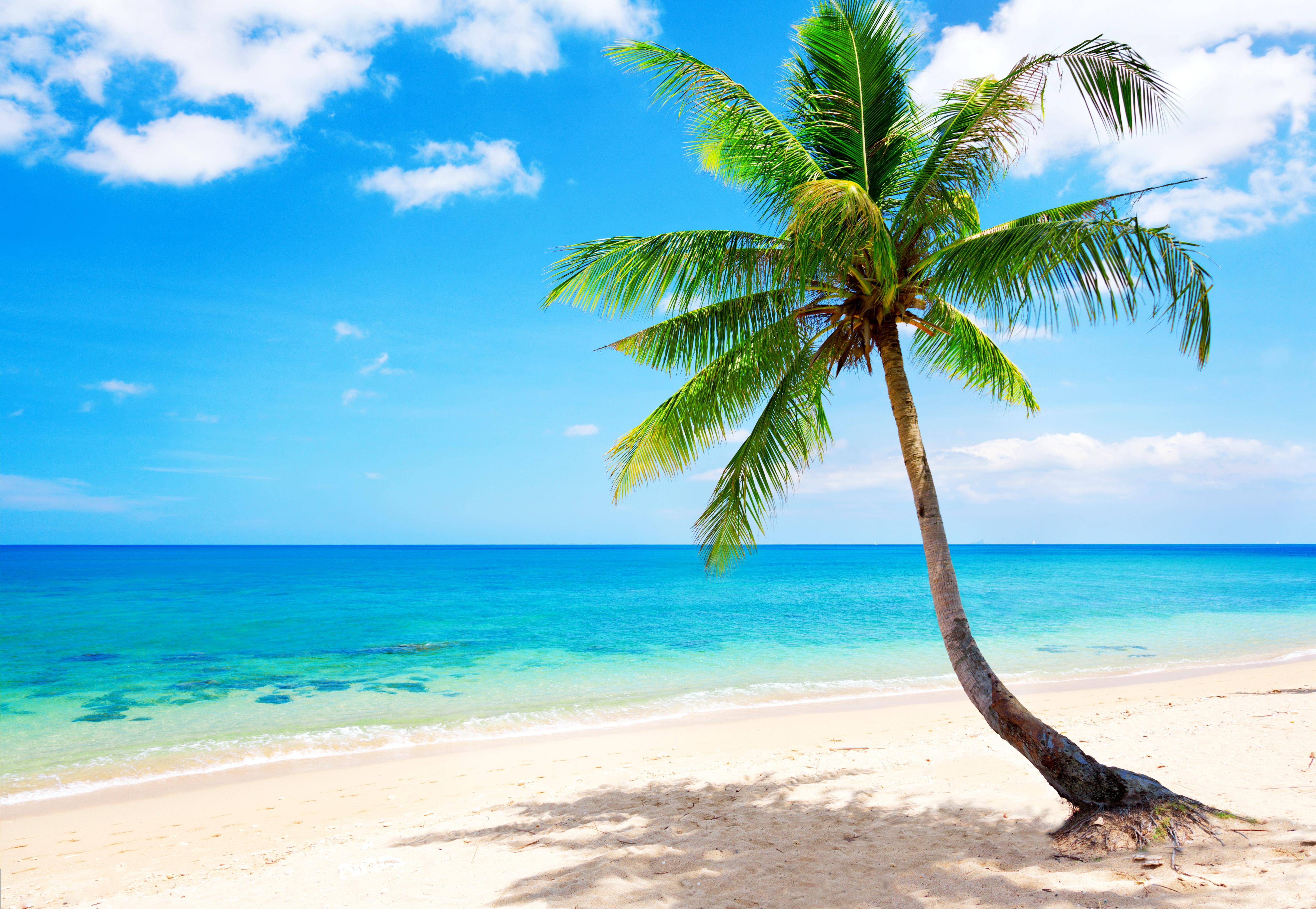 Tropical Beach Wallpapers Pictures Images 5000x3456