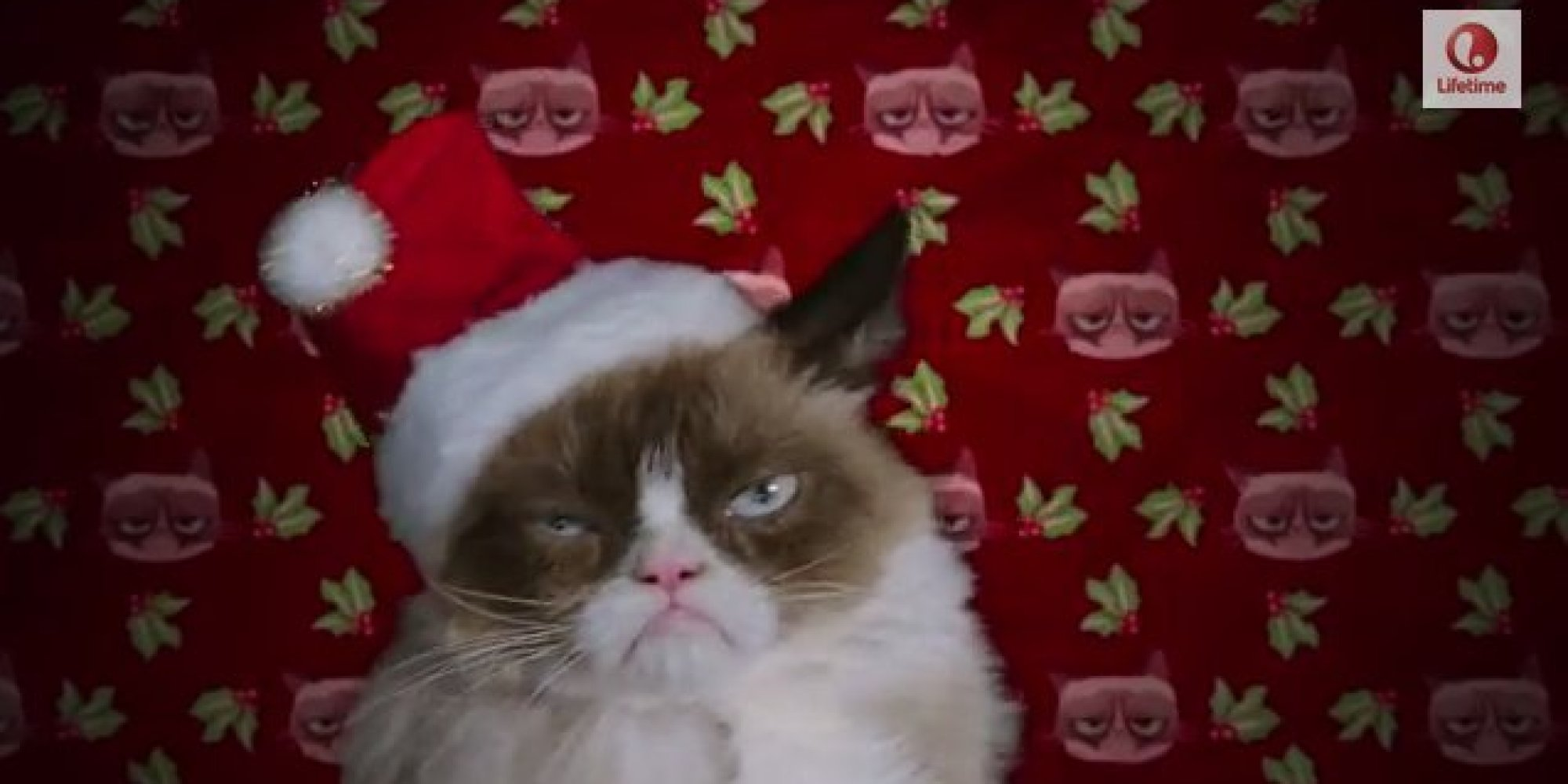Grumpy Cats Christmas Movie Trailer Is Here   And Shes Not Happy 2000x1000