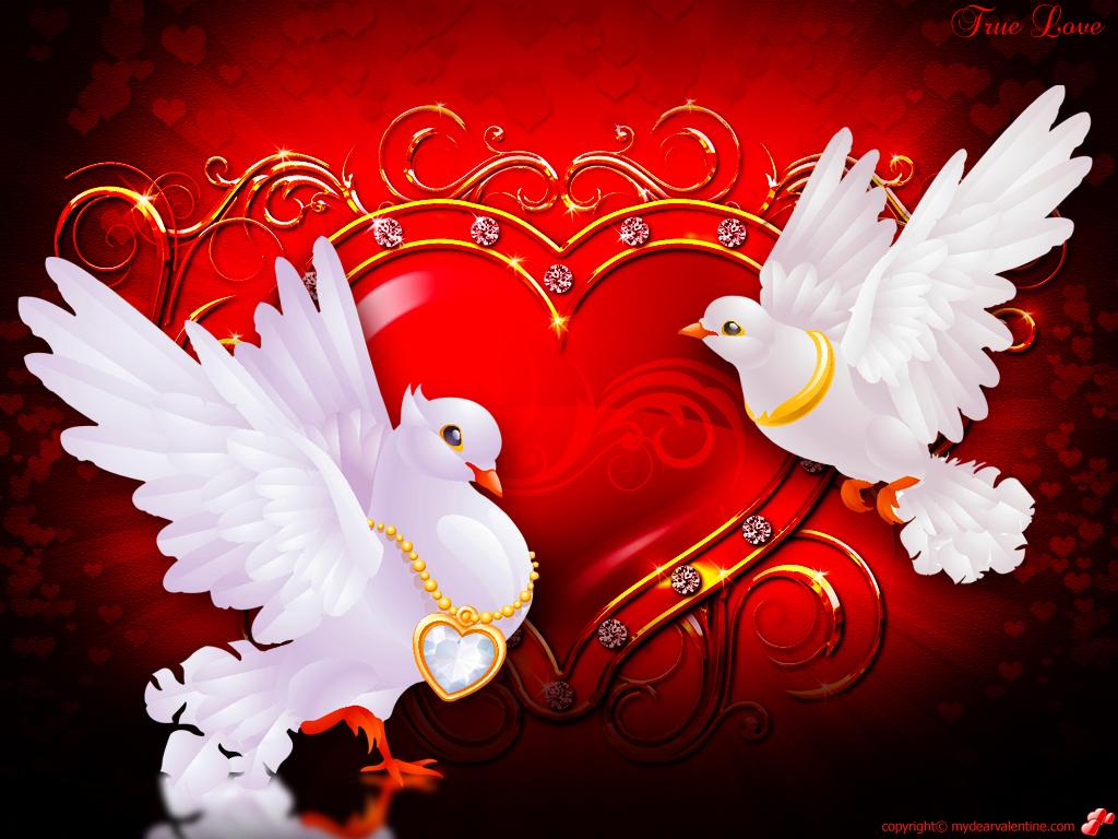 Valentine Wallpaper True Love 1024x768