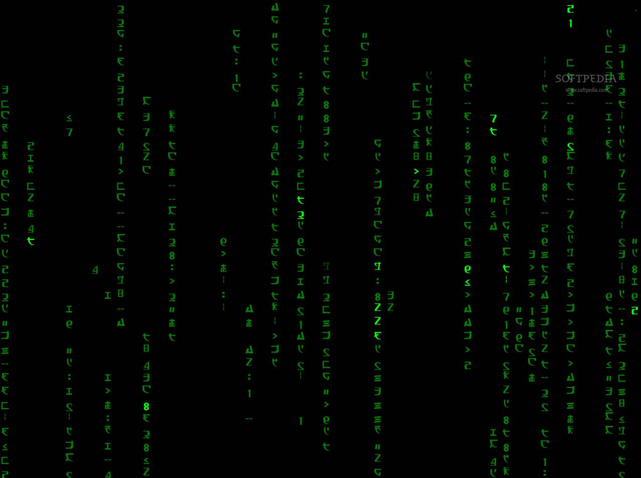 Animated Matrix Wallpaper   Animated Wallpaper Windows 7 1277x952