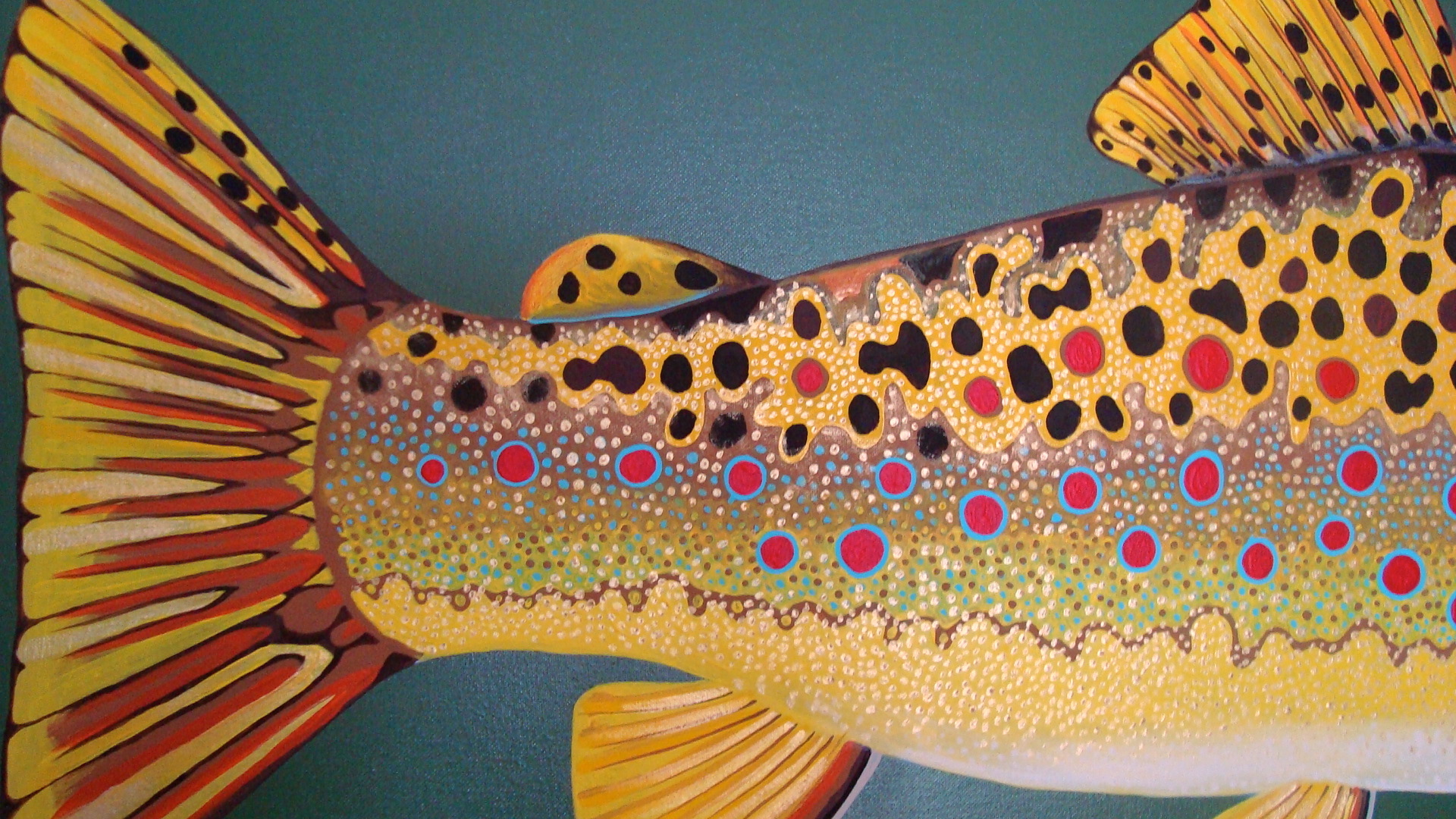 rainbow trout wallpaper wallpapersafari