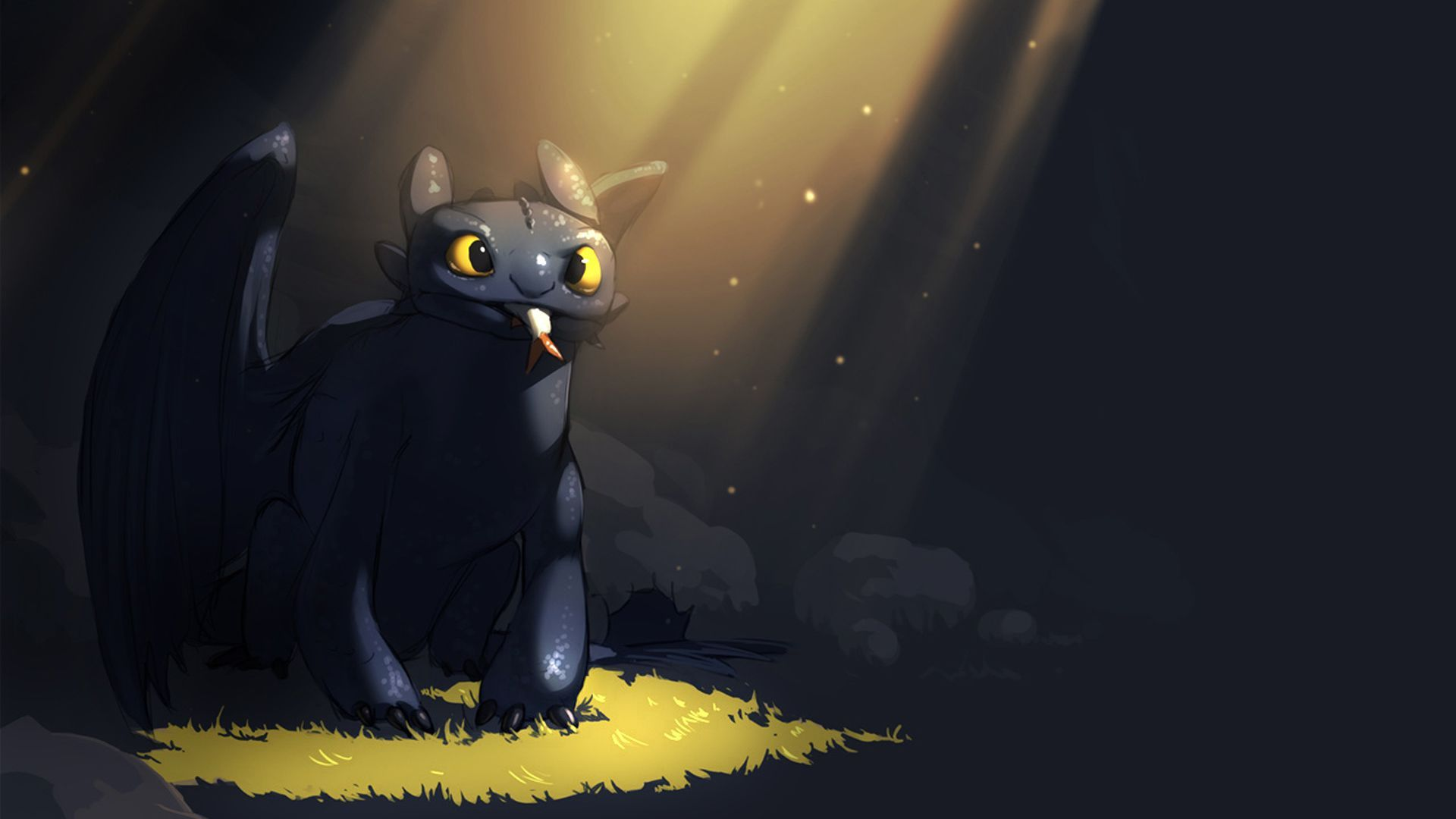 How to Train Your Dragon Toothless   Wallpaper High Definition High 1920x1080