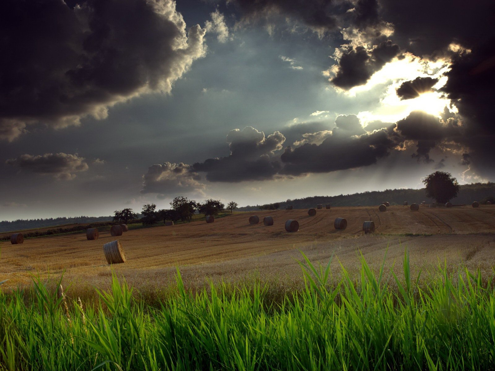 Thunderstorm above the field wallpaper   Nature wallpapers 1600x1200