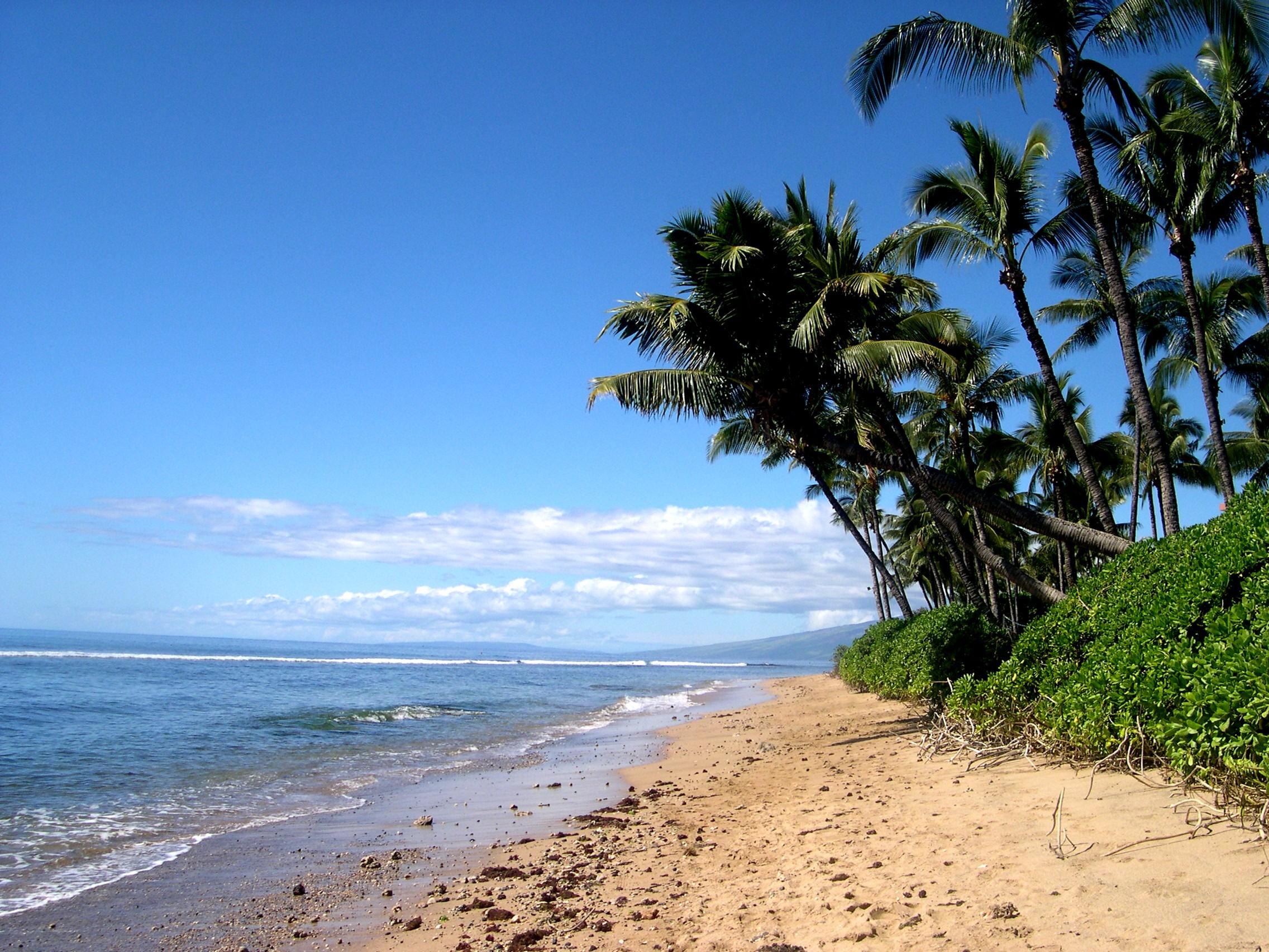 Maui  Hawaii Desktop and mobile wallpaper Wallippo 2272x1704