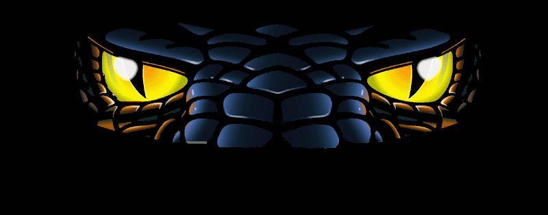 snake eyes wallpaper 800jpg 800x314