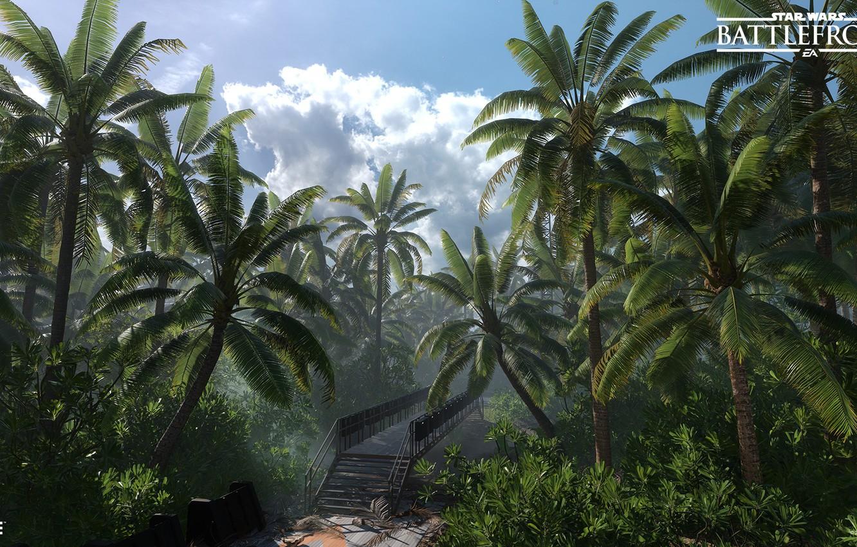 Wallpaper forest bridge palm trees Star Wars Battlefront 1332x850