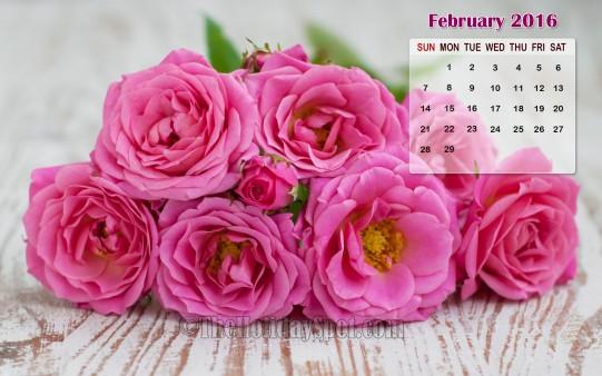 February Calendar Wallpaper 2016   Wallpapers from TheHolidaySpot 541x338