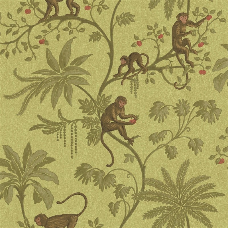 Jungle of Monkeys Wallpaper   Discount Wallcovering 800x800