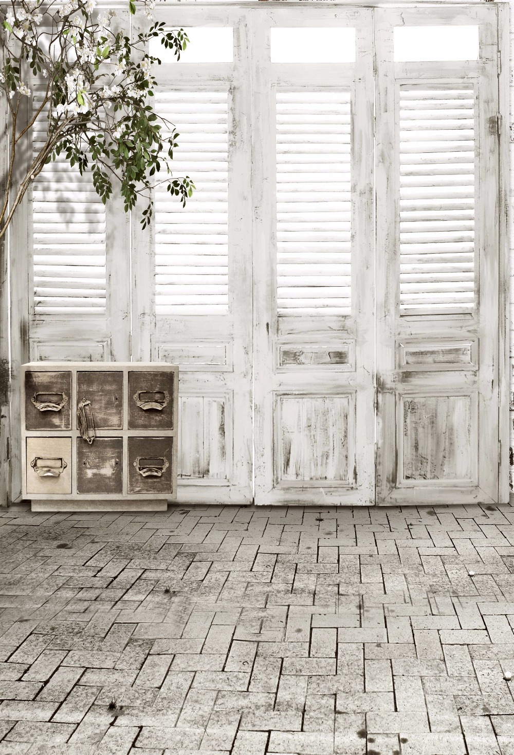 Viny photography background indoor backdrop vintage door 1000x1467
