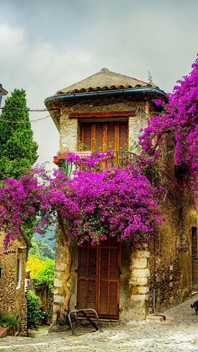 Wallpaper Provence France Tourism Travel Architecture 5112 640x1138
