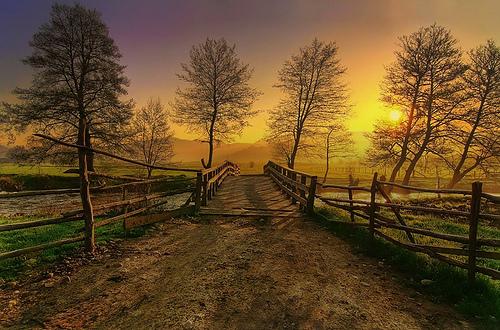world best wallpaper 4 Flickr   Photo Sharing 500x330