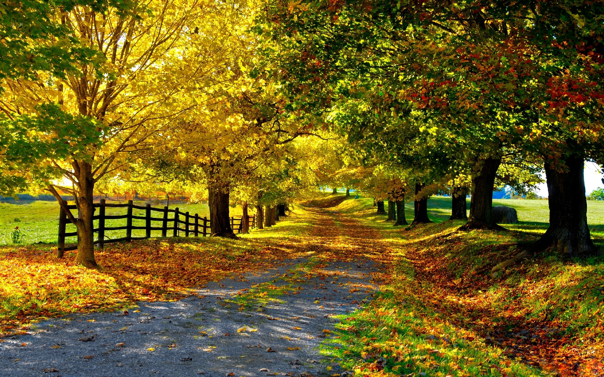 desktop autumn wallpaper   wwwwallpapers in hdcom 1920x1200