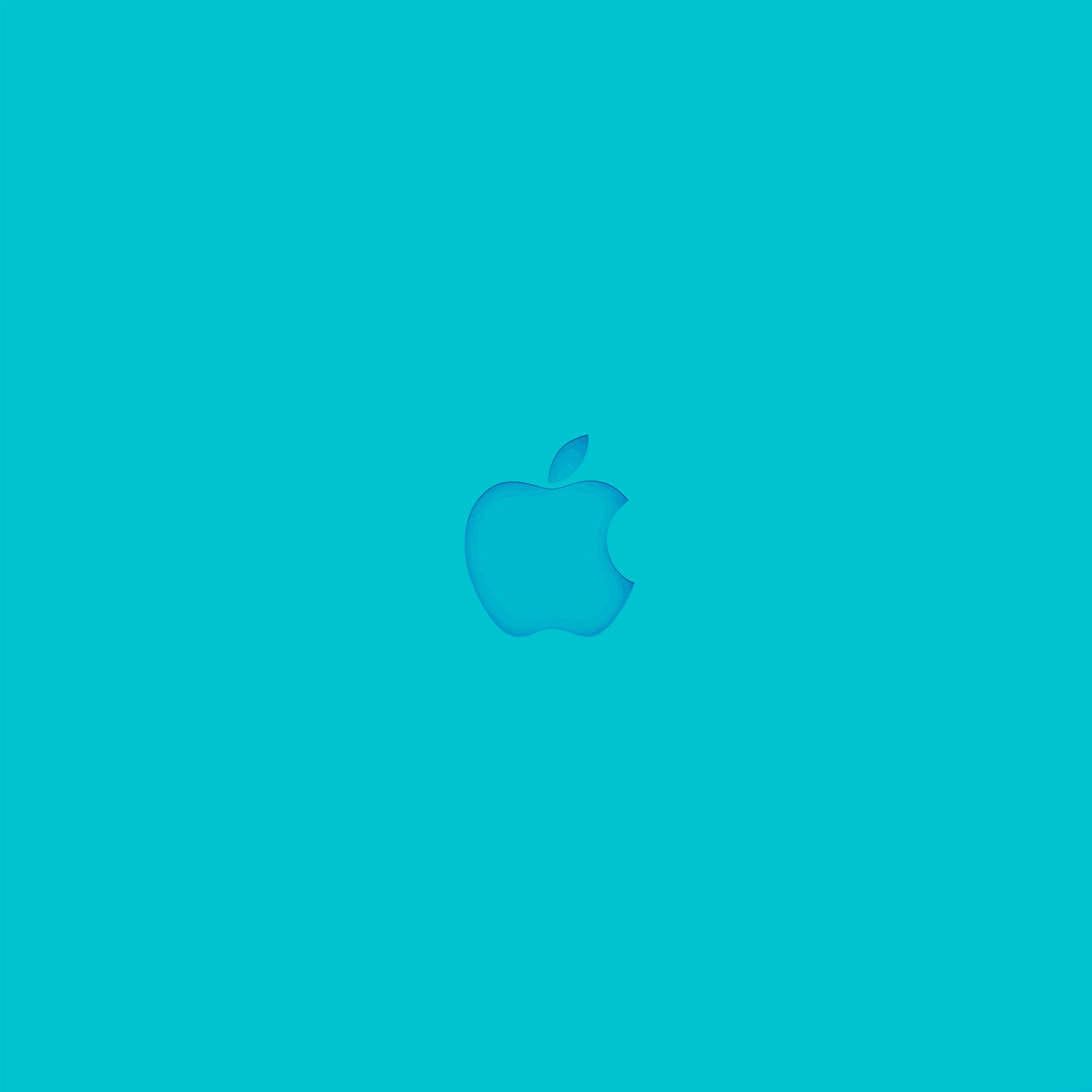 iPad ProApple Logo 2732x2732