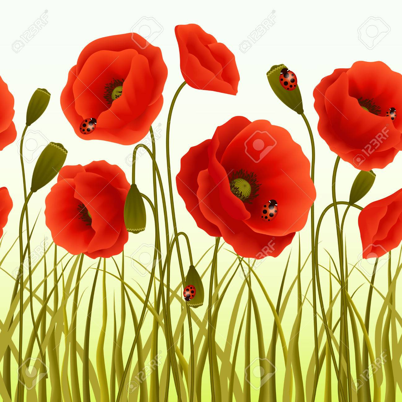 Red Romantic Poppy Flowers And Grass With Ladybugs Wallpaper 1299x1300