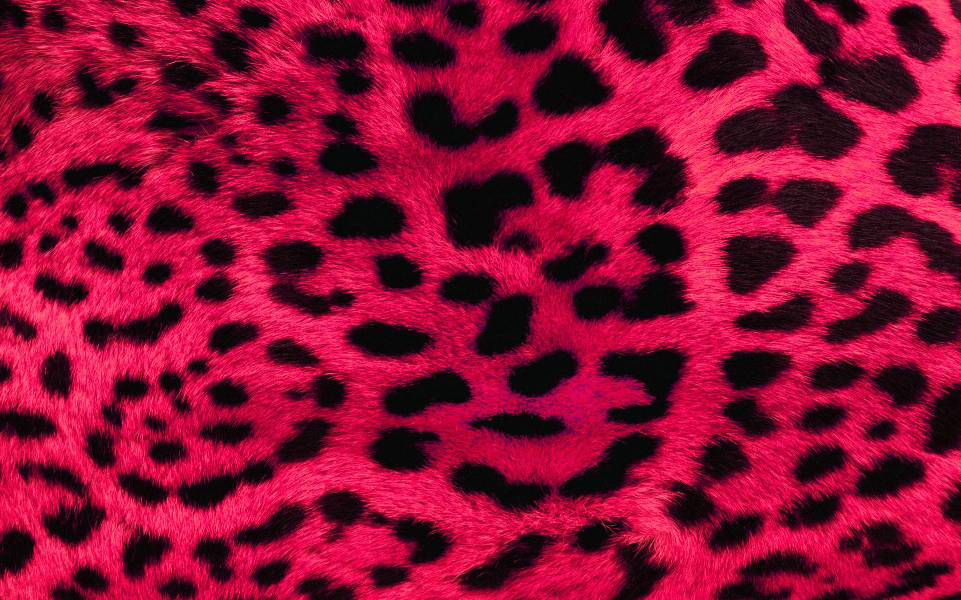 Leopard Wallpaper for Bedroom wallpaper Leopard Wallpaper for 1920x1200