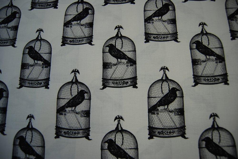 Edgar Allen Poe Nevermore Raven Claw Bird Black Crow Spooky 1000x669