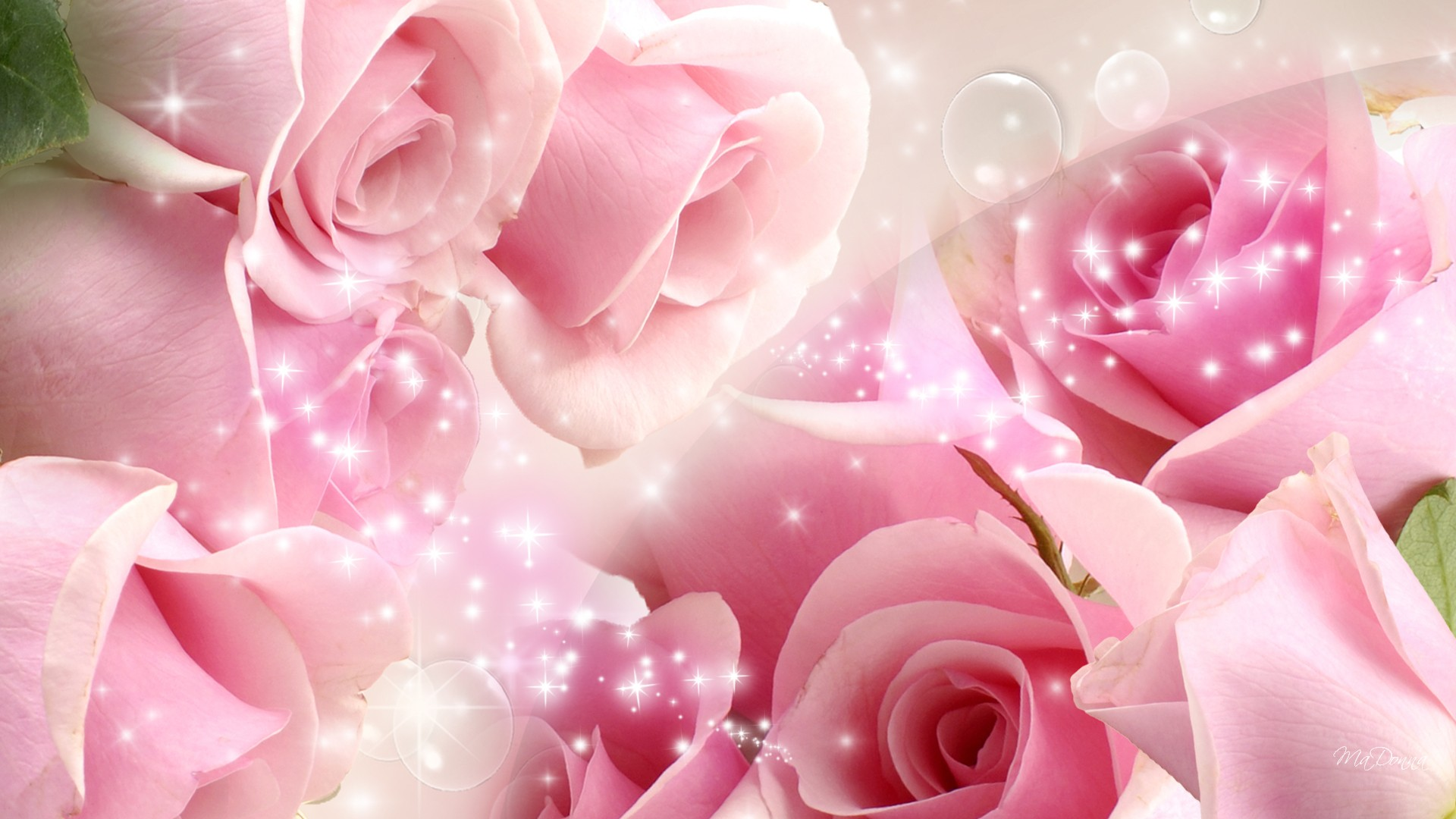 93 Black Pink Rosé Wallpapers On Wallpapersafari