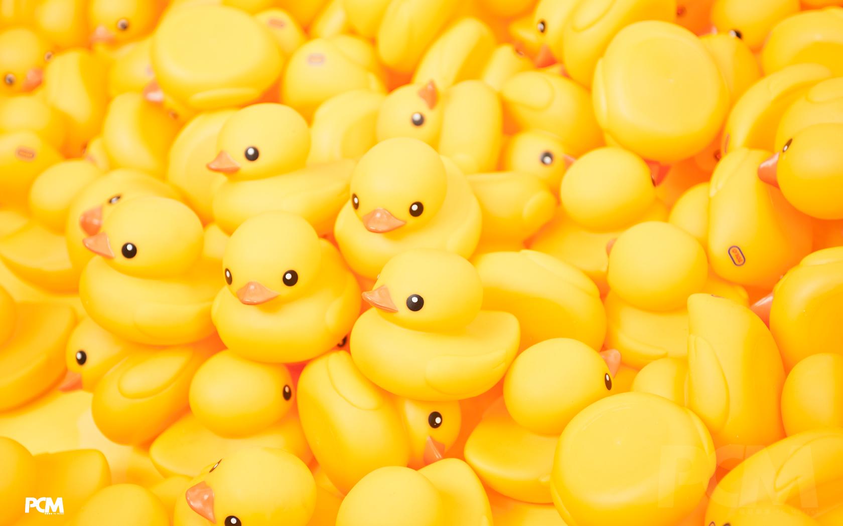 48] Rubber Duck Wallpaper on WallpaperSafari 1680x1050