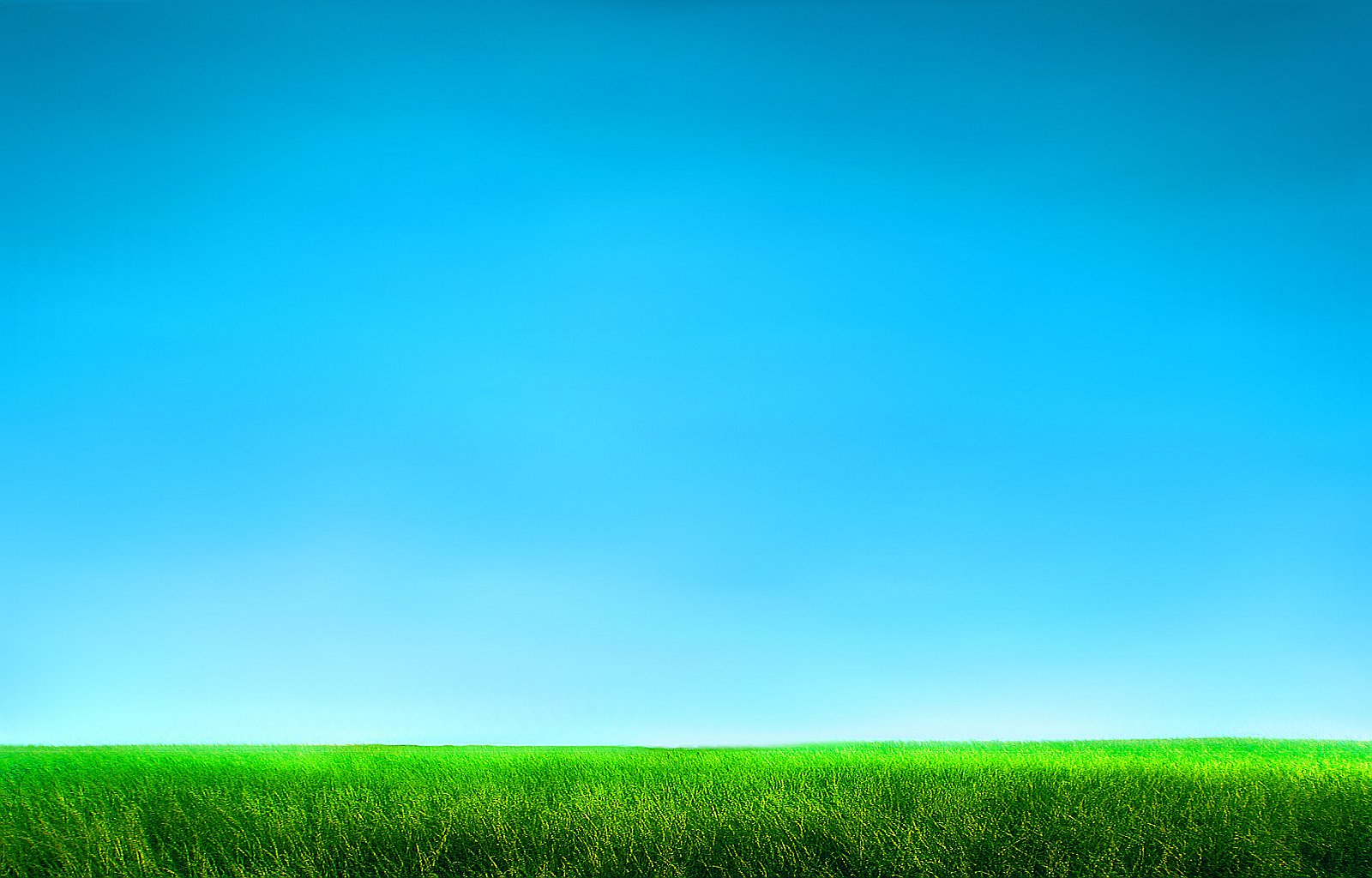 Grass and Sky Wallpaper - WallpaperSafari