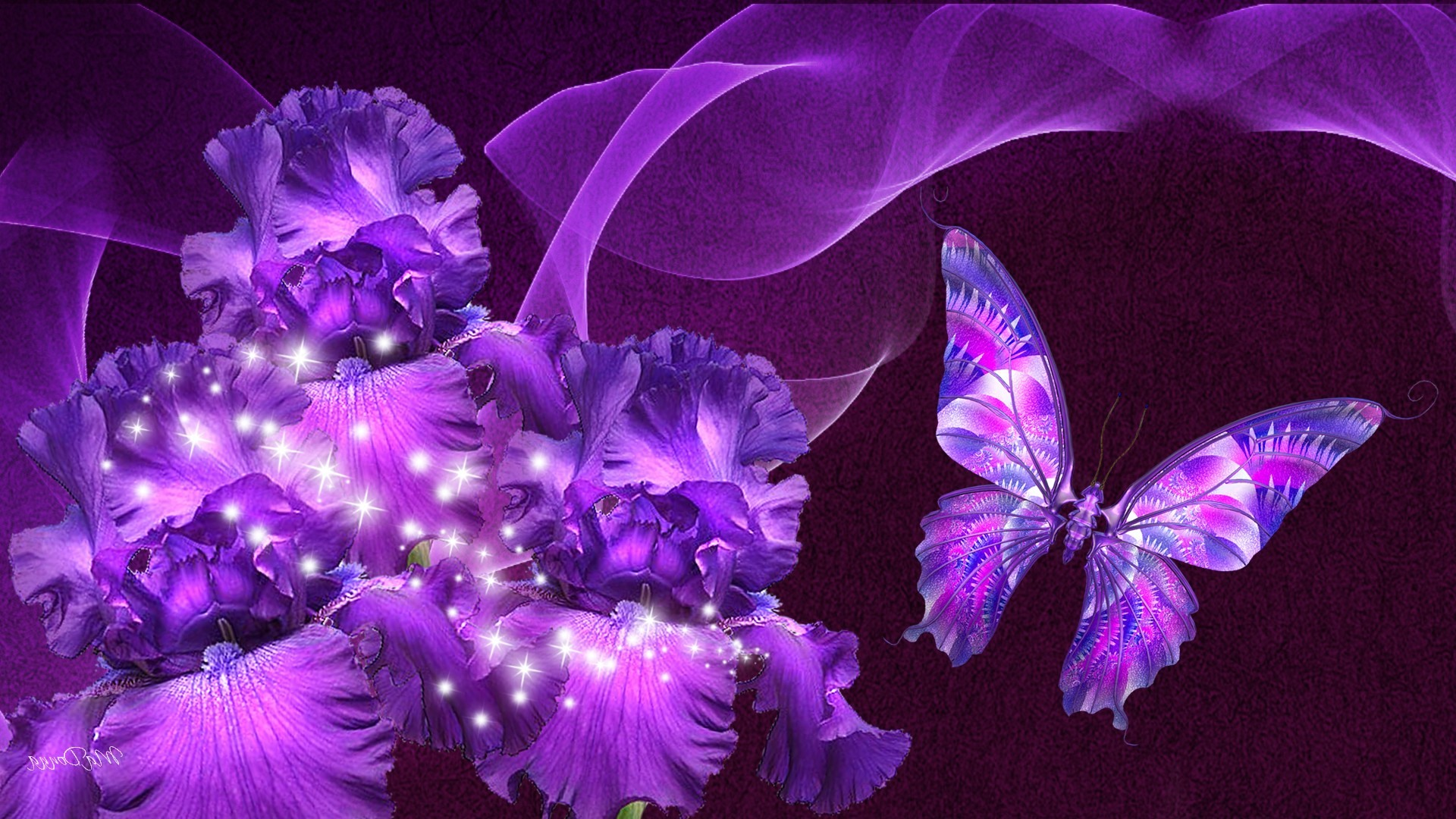 Purple Butterfly Wallpaper Hd Resolution at Abstract Monodomo 1920x1080