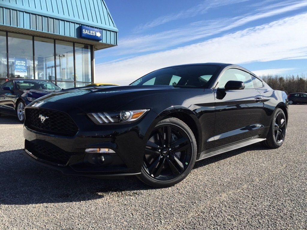 Related wallpapers from 2015 Ford Mustang EcoBoost Black 1024x768