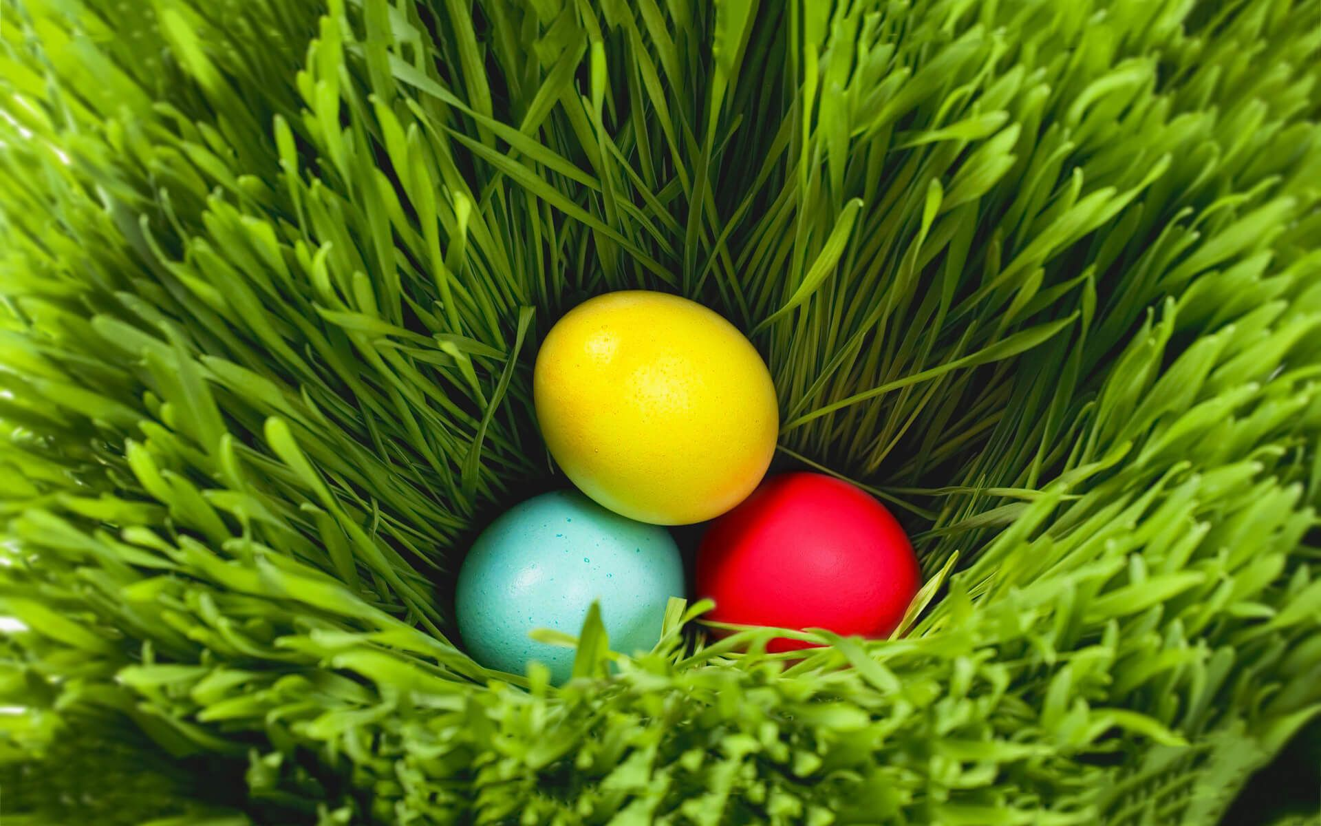 Pin by karan on Easter Backgrounds Easter wallpaper Coloring 1920x1200