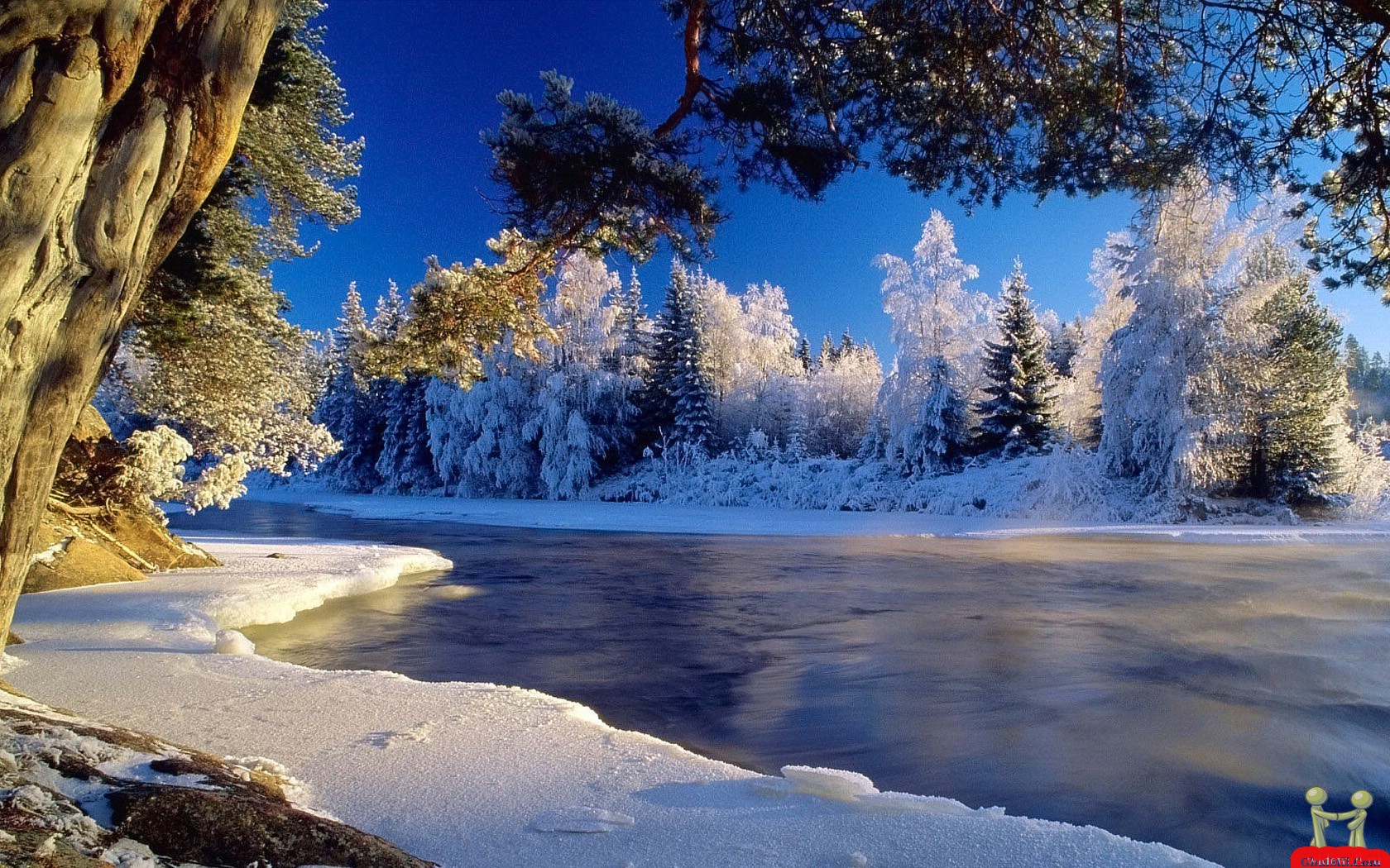 snow hd wallpaper | best wallpapers hd gallery