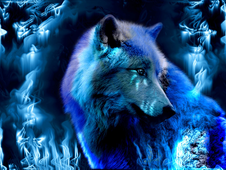 Wolf Soul Ice by ValinIsDakki 900x675