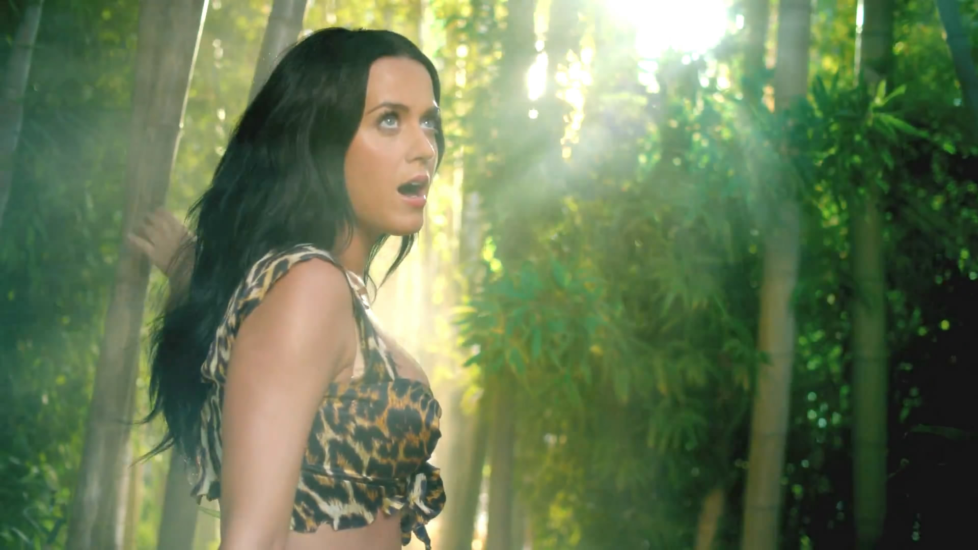 katy pery roar Katy perry roar: roar is a pop song recorded by american singer katy perry, for her 2013 fourth studio album prism perry co-wrote the song with bonnie mckee and its producers dr luke, max martin and cirkut.