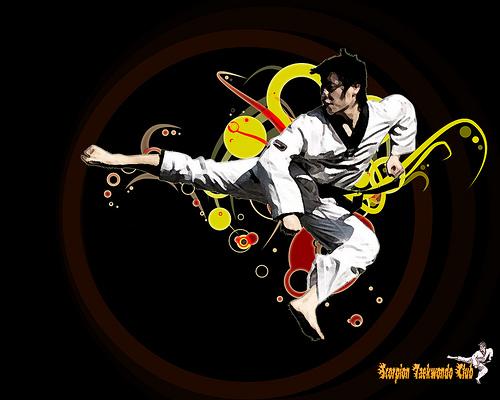 Scorpion Taekwondo Wallpaper Explore kun2 s photos on Fli 500x400