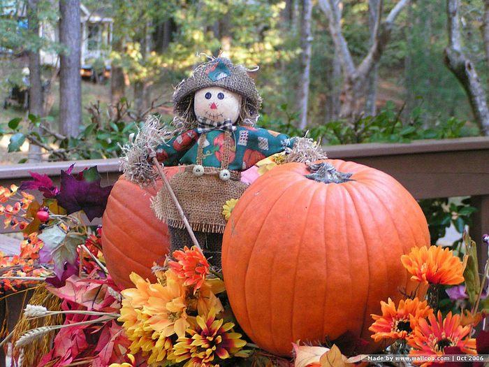 25  best <b>ideas</b> about <b>Autumn fall</b> on Pinterest | <b>Autumn</b> leaves ...