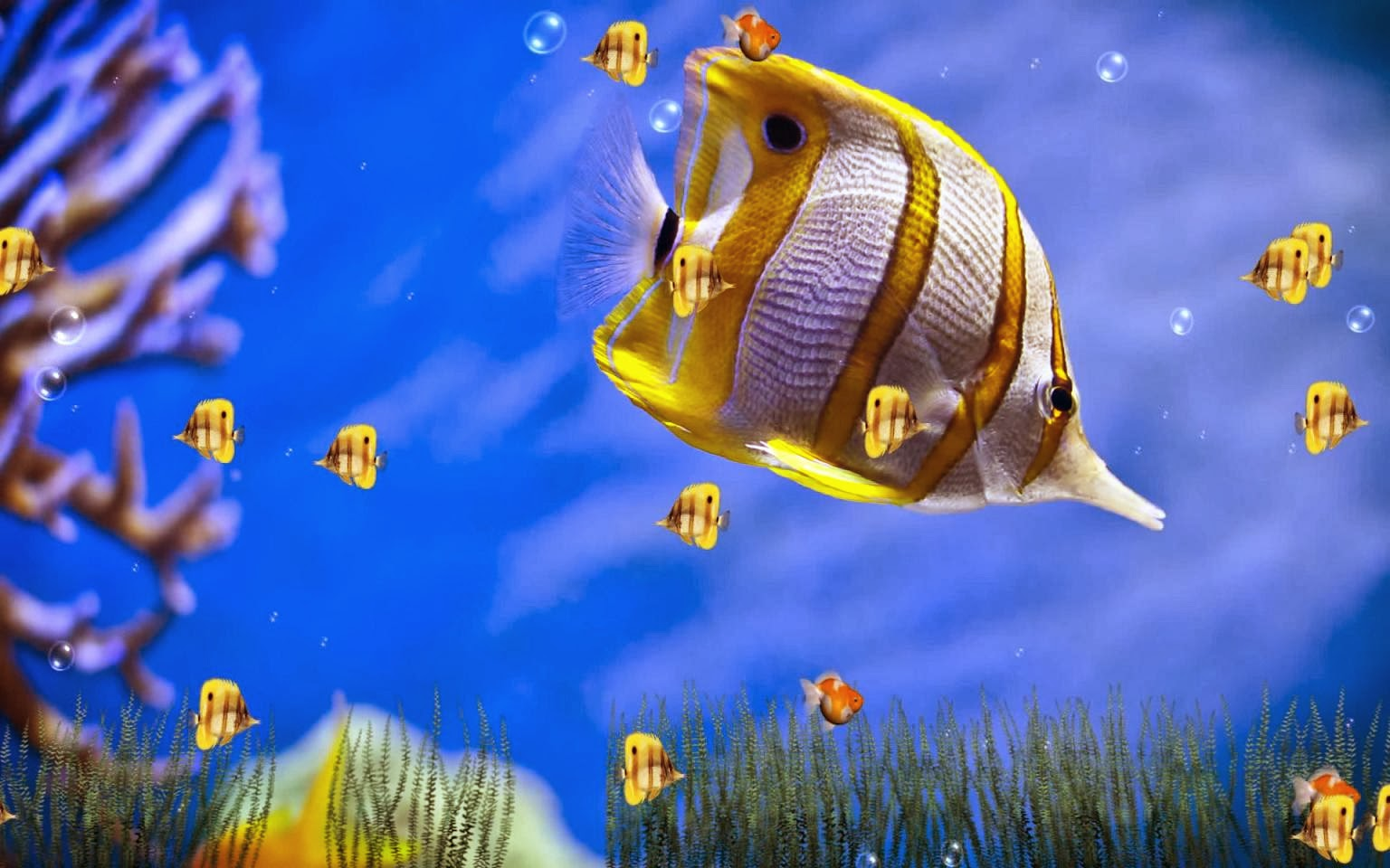 Animated WallpaperAnimated Wallpaper Windows 73D Animated Wallpapers 1536x960