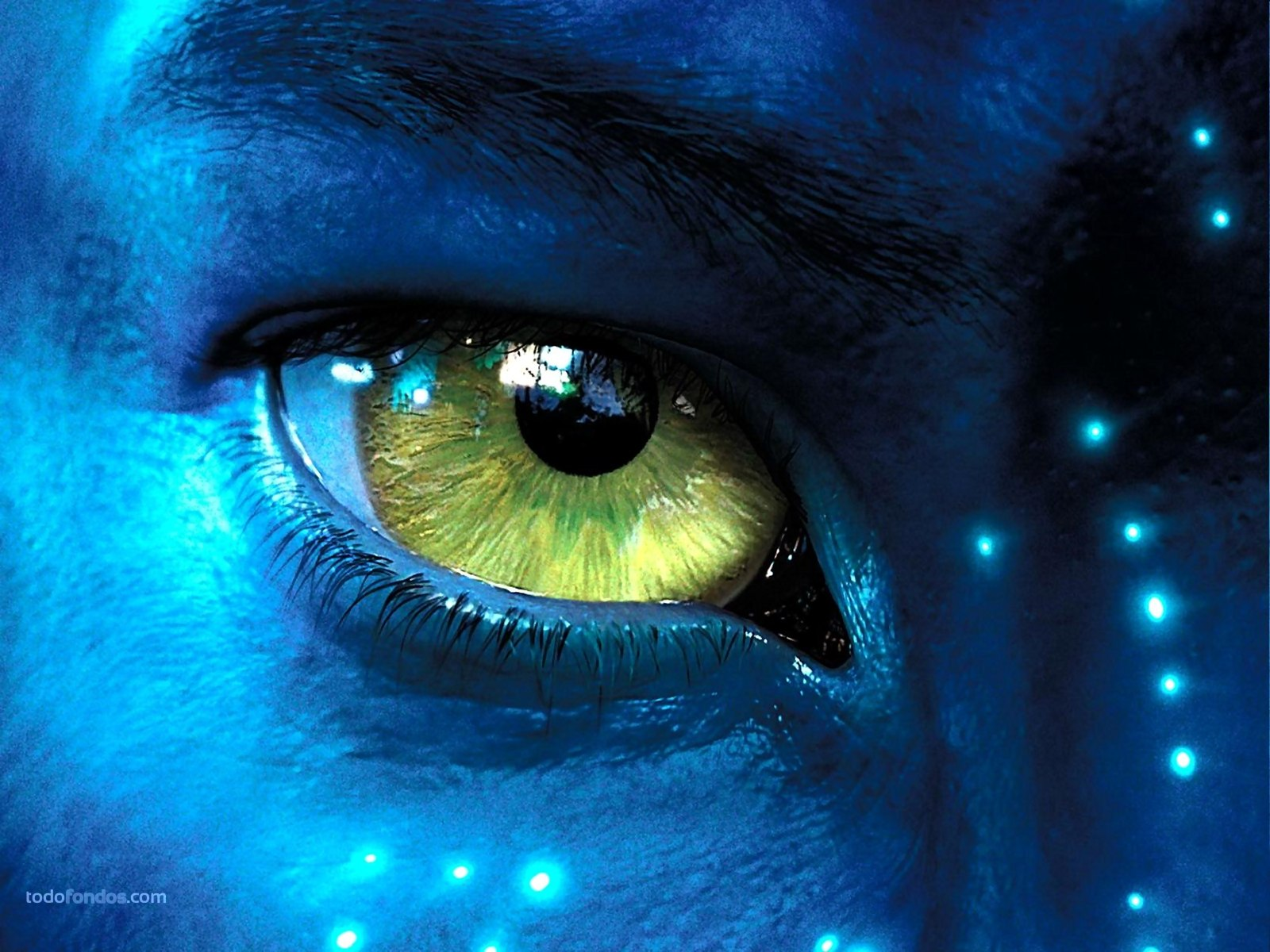 Avatar Hd Wallpapers 1080p Wallpapersafari
