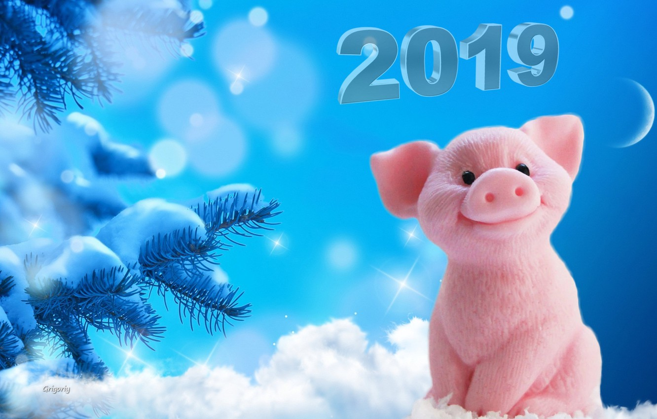 Wallpaper snow snowflakes the moon new year tree pigs 2019 1332x850