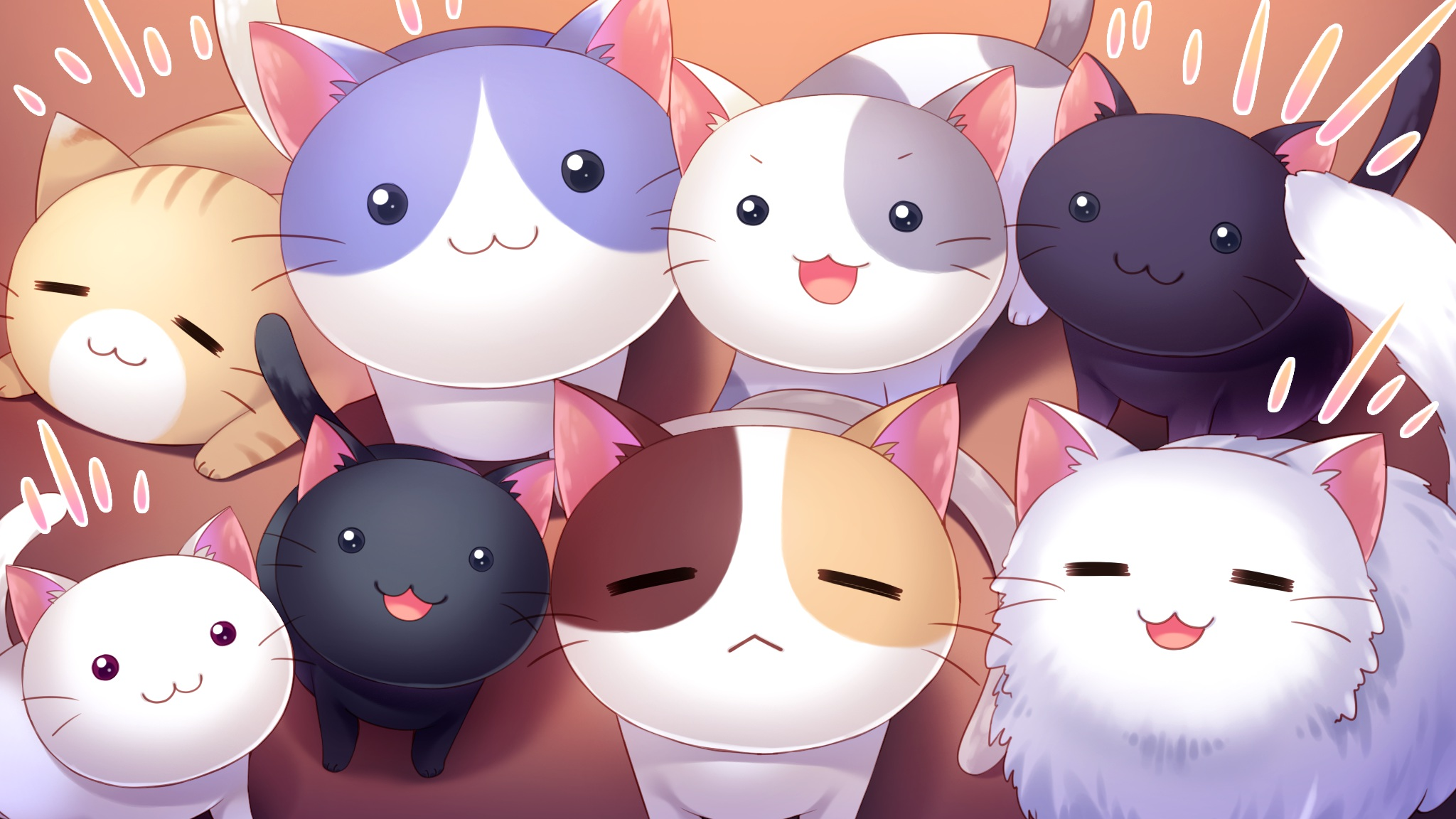 Anime Cat Wallpaper - WallpaperSafari