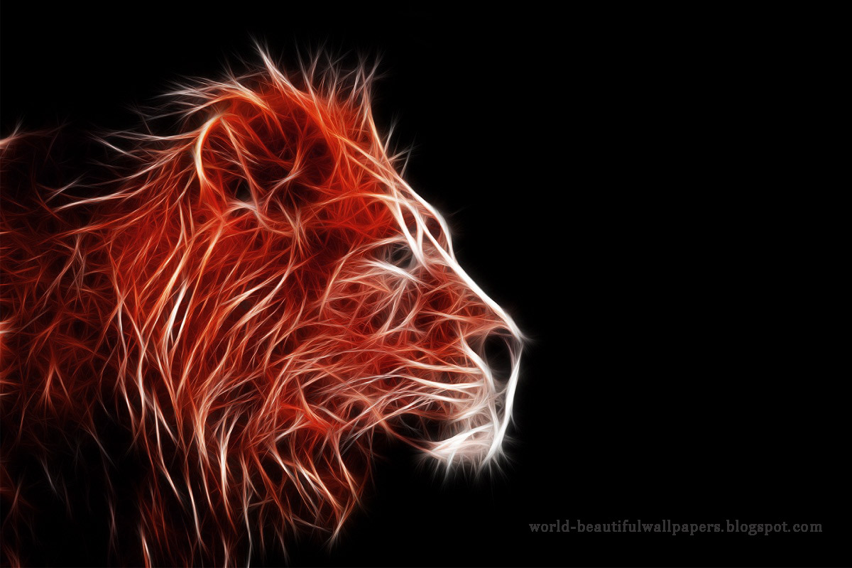 Beautiful Wallpapers lion wallpaper 1200x800