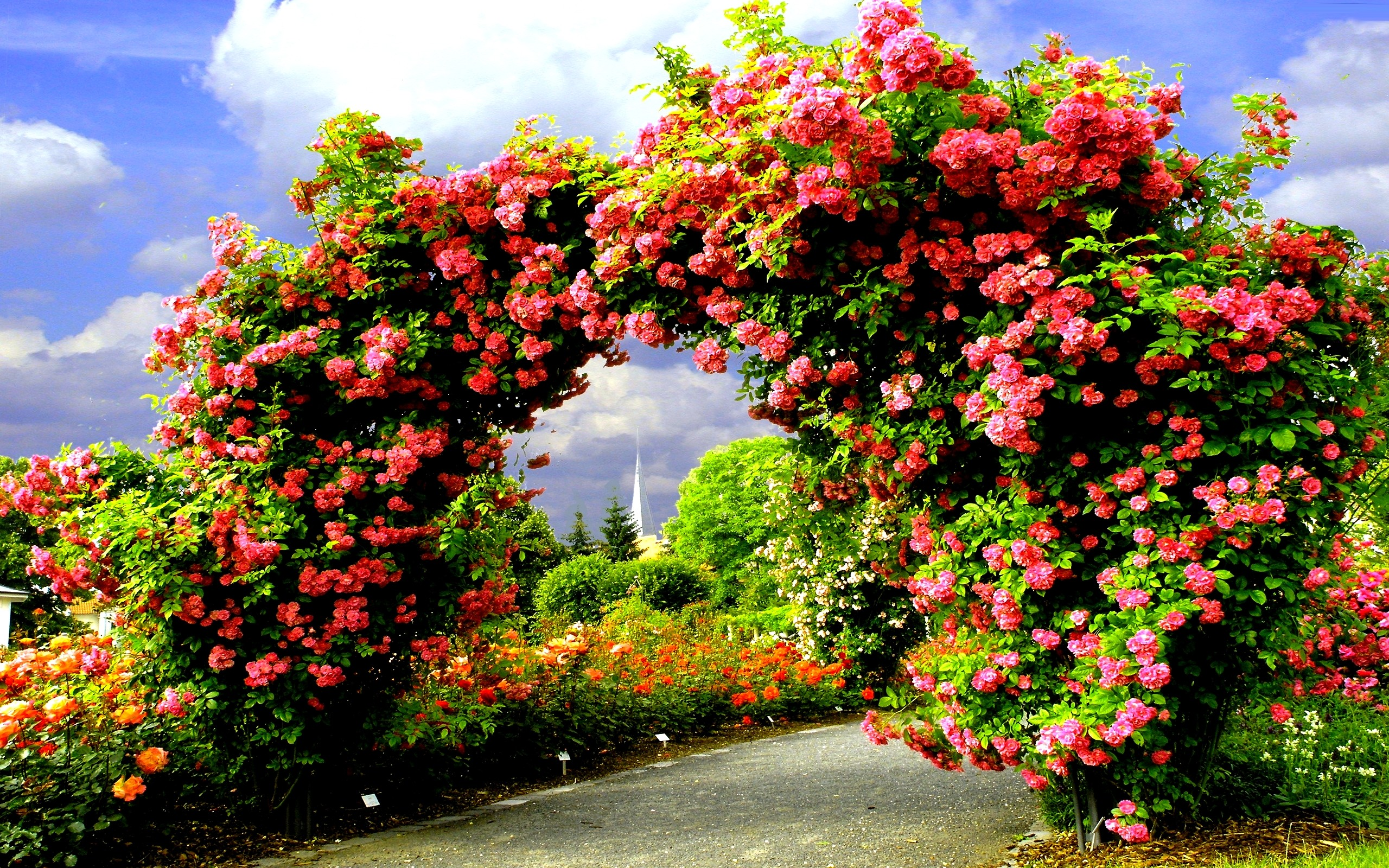 Garden Wallpapers HD 2560x1600